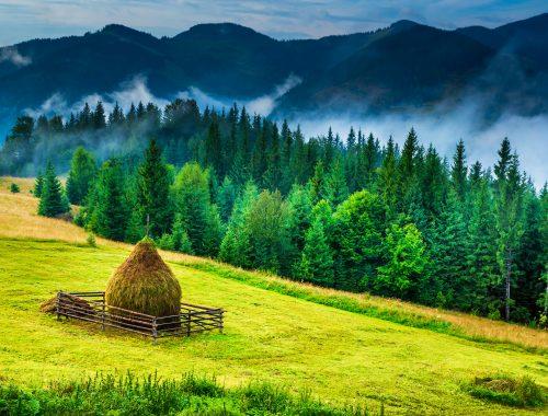 Landschaft in Bucovina